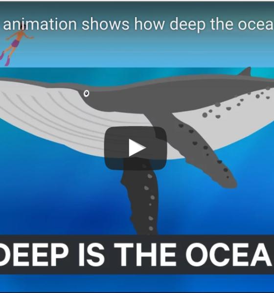 Så dybt er havet! (nok dybere end du tror)