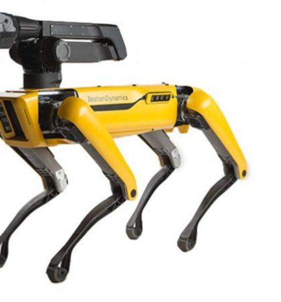 Byt labradoren ud med en robothund